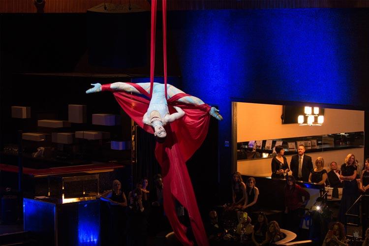 aerialist-shero-foundation-gala-2016